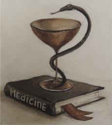 Устные переводчики в медицине